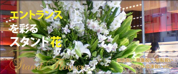 スタンド花 東京 新宿花屋 アイビー